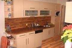 kuchyne (79)